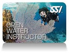 Click the Image Above to Become a Dive Professional Now!