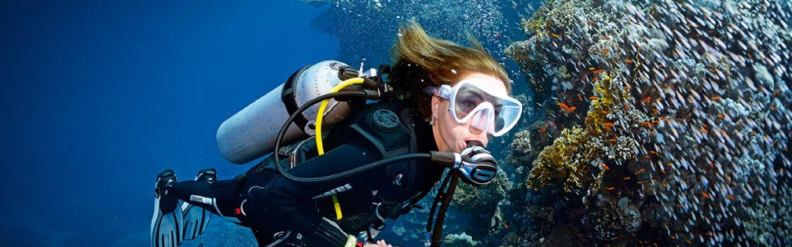open-water-diver_video_1200x500